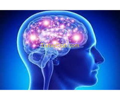 http://www.supplements4lifetime.com/where-to-buy-brain-plus/